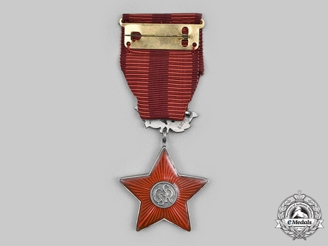 Order of the Red Star, Decoration (1960-1992) Reverse