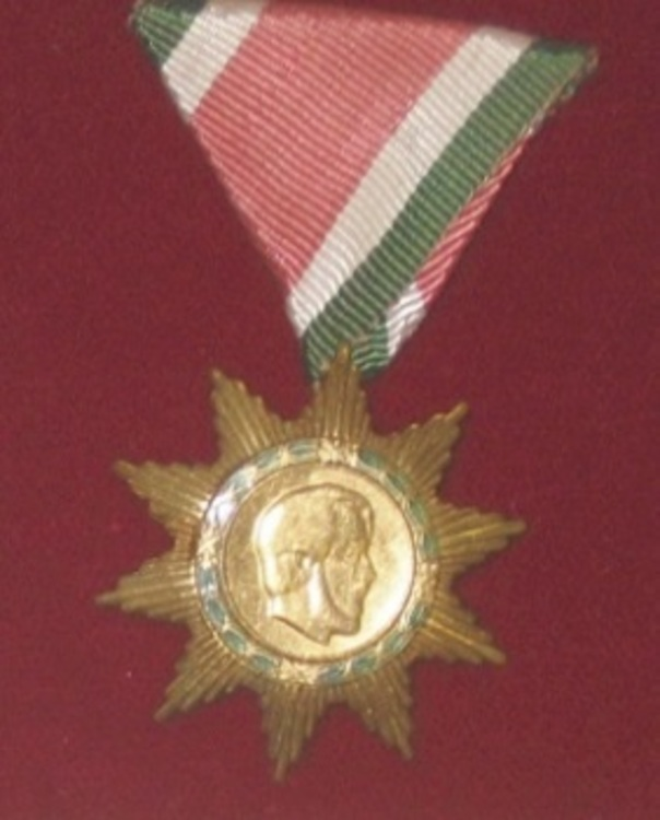 Hungarian+order+of+freedom%2c+bronze+medal