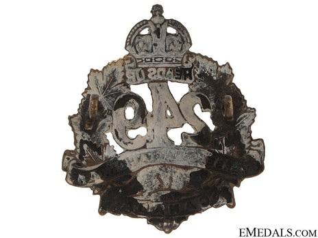 249th Infantry Battalion Other Ranks Collar Badge (Void) Reverse