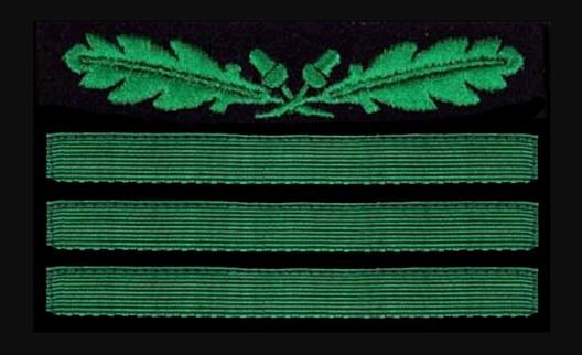 German Army Hauptmann Sleeve Grade Insignia Obverse