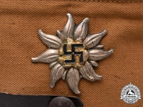 SA Cap Edelweiss Insignia (Hochland version) Obverse