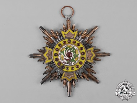 Order of Illustrious Brilliant Golden Grain, I Class Star Obverse