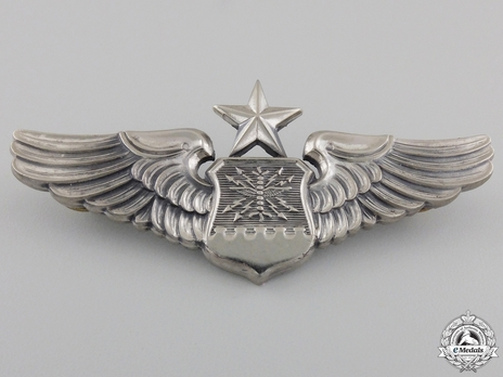 Senior Wings (with sterling silver) Obverse