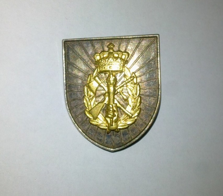 Silver+badge