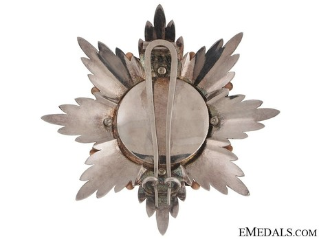 Dukely Order of Henry the Lion, Grand Cross Breast Star (in silver and gold) Reverse
