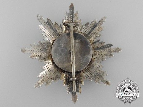 Order of St. Stephen, Type III, Grand Cross Breast Star (with faceted rays) Reverse
