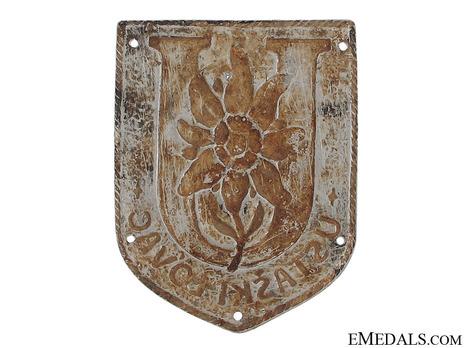 Aluminum Arm Badge Reverse