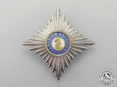 Type II, Civil Division, I Class Commander Breast Star (in silver gilt)