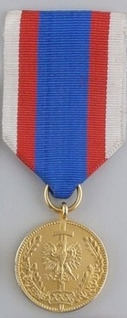 Medal for Service to the Nation, I Class Obverse