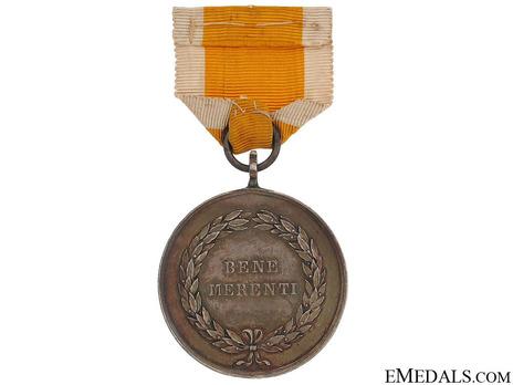 Bene Merenti Medal, Type IV, Large Silver Medal Reverse