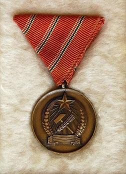 Distinguished Service Medal, Type I Obverse