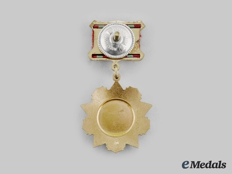 Medal for Distinguished Military Service, I Class Reverse