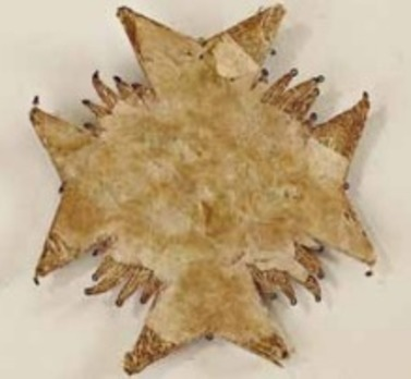 Order of the Lion of Bavaria, Breast Star (in cloth)