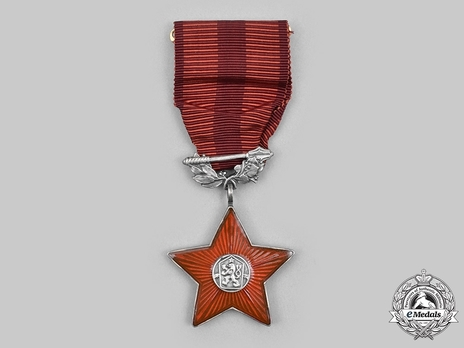 Order of the Red Star, Decoration (1960-1992)