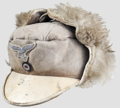Luftwaffe Officer Ranks Winter Visored Field Cap Profile