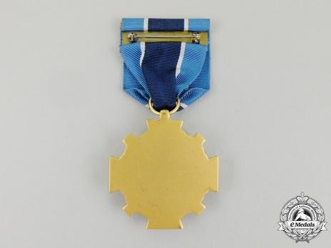 NASA Distinguished Service Medal (1964-) Reverse
