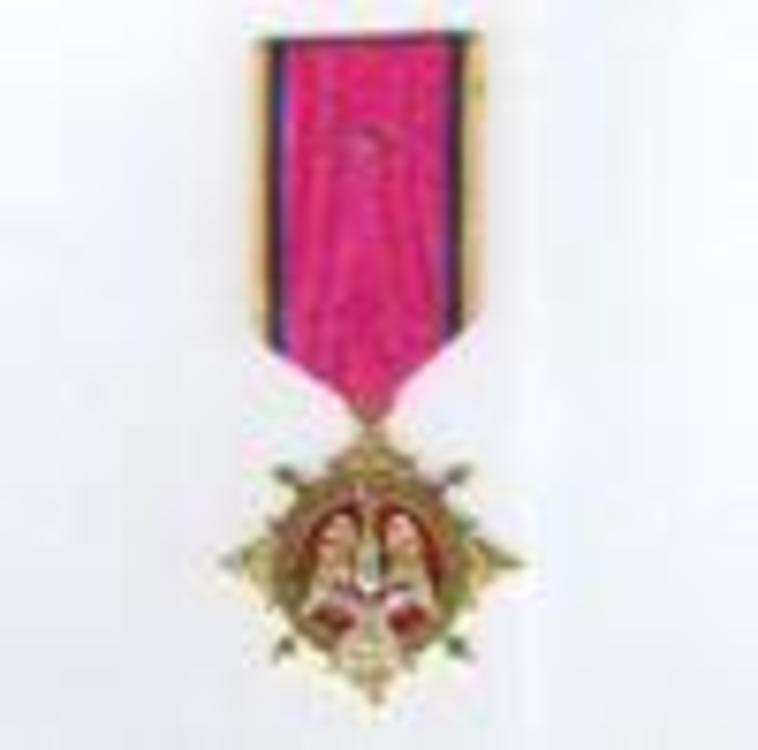 Gilt medal obv s9