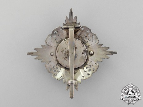 Commander Breast Star (in silver and silver gilt) Reverse