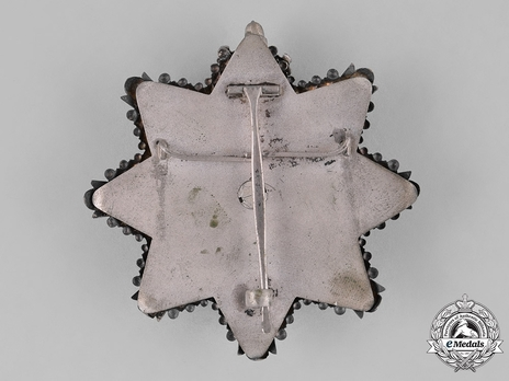Order of the Estonian Red Cross, I Class Breast Star Reverse