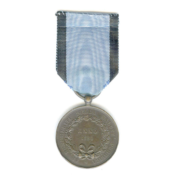 Medal of Merit for Public Health, in Bronze Reverse