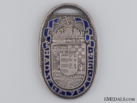 War Medal for Hungarian Volunteers in Silver Obverse