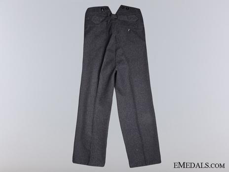 Luftwaffe NCO/EM Ranks Long Trousers Reverse