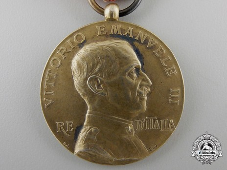 Medal of Merit for Italian Schools Abroad, Type II, in Silver Obverse