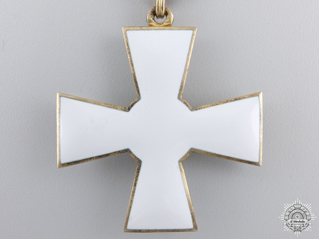 Order of the Lion of Finland, Civil Division, I Class Knight Reverse