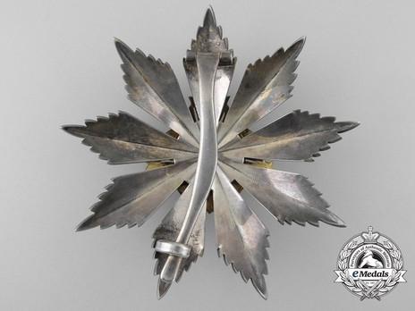 Order of Gediminas, Type I, II Class Breast Star Reverse
