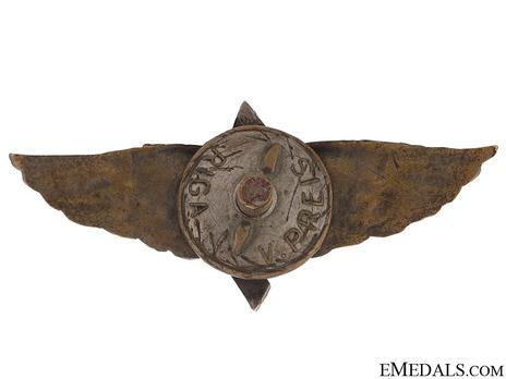 Meritorious Pilot's Badge Reverse