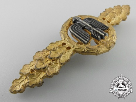 Short-Range Day Fighter Clasp, in Gold Obverse