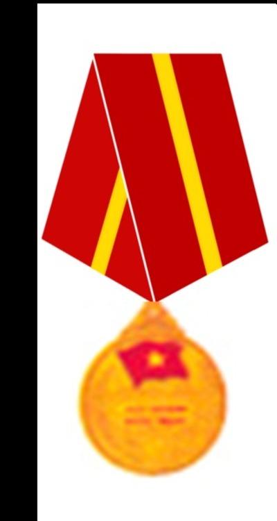 319px friendship medal