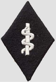 SS-TV Medical Detachment Officer Trade Insignia Obverse