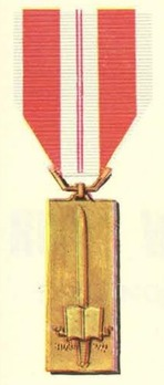 Training Service Medal, I Class