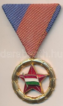 Medal of Sports Merit in Gold Obverse