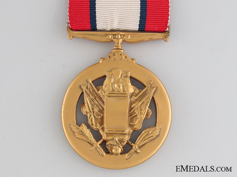 Army Distinguished Service Medal Reverse