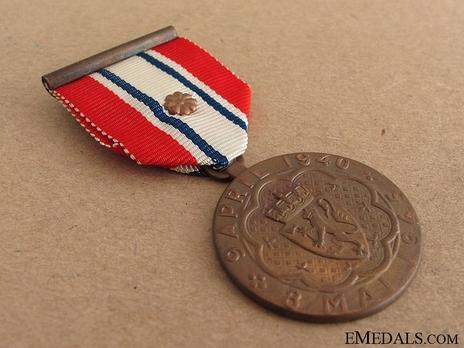 Defence Medal (special distinction) Obverse