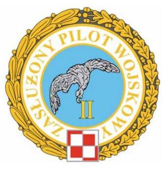 Decoration for Distinguished Military Pilots (for 2 awards) Obverse
