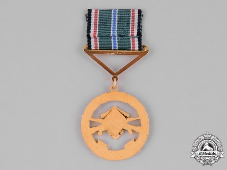 Order of the War Wounded Reverse