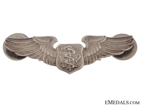 Basic Wings (reduced size)Obverse