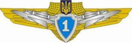 Compulsory Military Service Airforce 1st Grade Badge Obverse