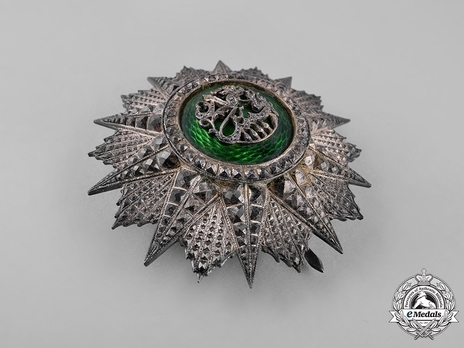 Order of Glory, Type II, Grand Cross Breast Star (1925)