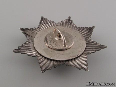 Star of the Schutztruppe Bug (screwback) Reverse