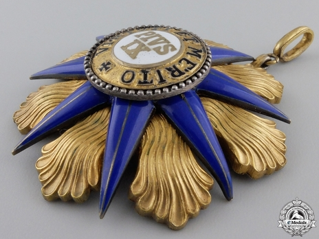 Order of Pius IX, Grand Cross  (with silver-gilt) Obverse
