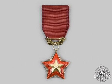 Order of the Red Banner, Gold Star (1960-1989)