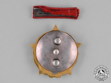 Order of the Partisan Star, I Class Reverse