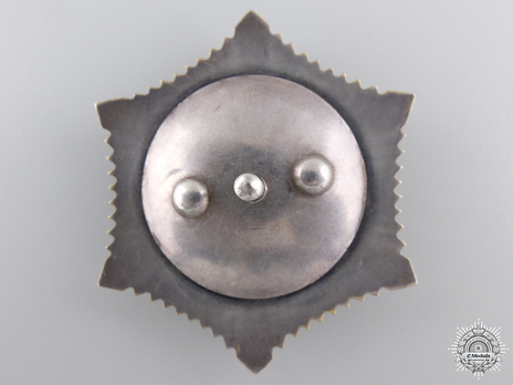 Order of the Polar Star, Type III Reverse