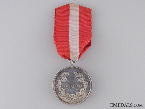 Army Long Service Medal, in Silver Reverse