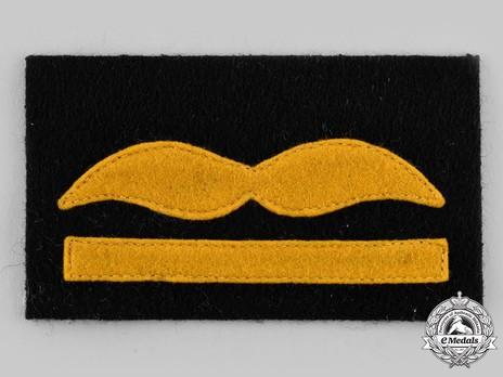 Luftwaffe Generalmajor Rank Insignia Obverse