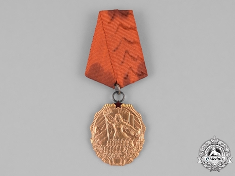 Order of the Flag (in Gold)